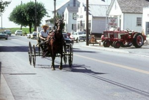 Amish Delivery Wagon