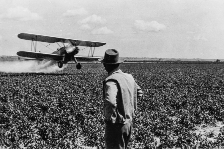 Spraying a soybean field. (Illinois c.1950)